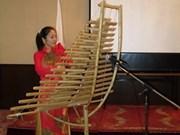 越南文化和旅游推介活动在日本举行
