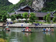 越南接待游客量创新高