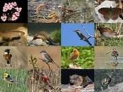 亚行向大湄公河次区域扩大生物多样性项目提供贷款