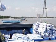 印度尼西亚继续进口越南大米