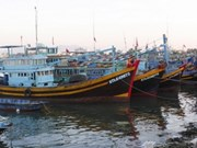 越南与菲律宾紧密配合处理越南渔民被拘捕一事