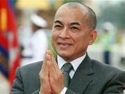 柬埔寨国王:柬越兄弟般的友谊与全面合作日益向前发展