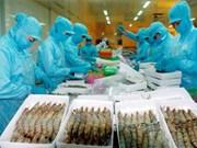 越南努力稳定向美国和欧洲市场的出口活动