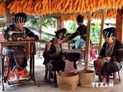 越南老街省沙巴市镇未来将成为国家、国际级旅游度假区
