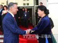 越南国会主席阮氏金银访哈的活动密集
