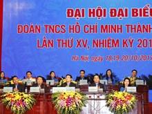 胡志明共青团河内市第十五次代表大会今日开幕(组图)