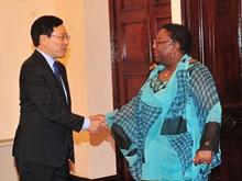 越南政府副总理兼外交部长范平明与利比里亚外交部部长马扬•卡马拉举行会谈(组图)