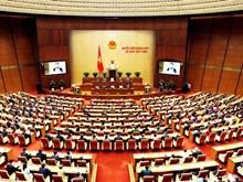 越南第十四届国会第五次会议开幕(组图)