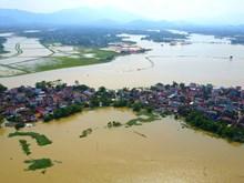 红河和积江水位大幅上涨 河内多地被淹(组图)