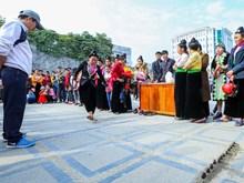 奠边省人民欢度2018年戊戌春节(组图)