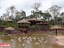 参观越南最大野生动物保存中心(组图)