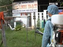 胡志明市新发现两例寨卡病毒感染病例