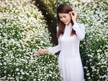 令人欢欣的画眉菊花盛开季节(组图)