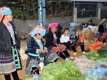 越南莱州省三堂集市的色彩(祖图)