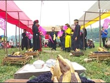 高平省二姑娘文化节被列入国家级非物质文化遗产名录