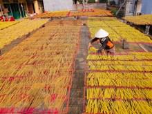 春节到访兴安省传承数百年的制香工艺村