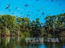 越南薄辽省拨出资金来升级改造各旅游景区