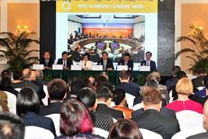 越南向外国驻河内代表处和国际组织通报APEC领导人会议周的结果(组图)
