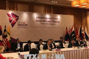 越南代表团出席东盟系列高官会议