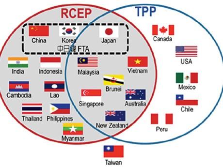 新加坡和印度尼西亚敦促印度加速RCEP谈判