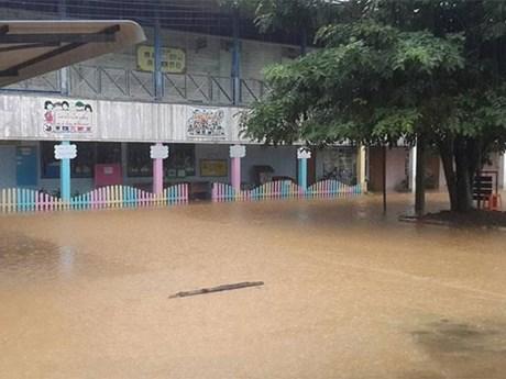 """台风""""贝碧嘉""""对泰国造成严重损失"""