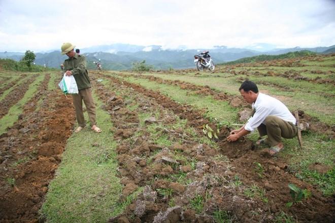 莱州边境地区人民努力做好新农村建设工作